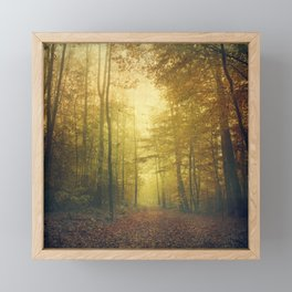 fall morning forest Framed Mini Art Print