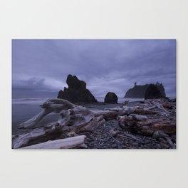 West Coast Washington Canvas Print