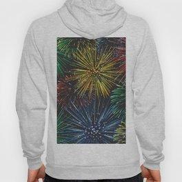 Fireworks in the Sky Hoody