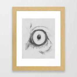 Cats Eye (lion) Framed Art Print