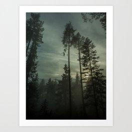 Secret in the Fog Art Print