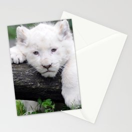 'Too Pooped to Pop' Baby Albino Lion Cub Stationery Cards