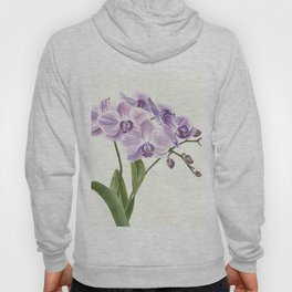 Purple phalaenopsis artwork Hoody