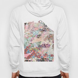 Edinburgh map Hoody