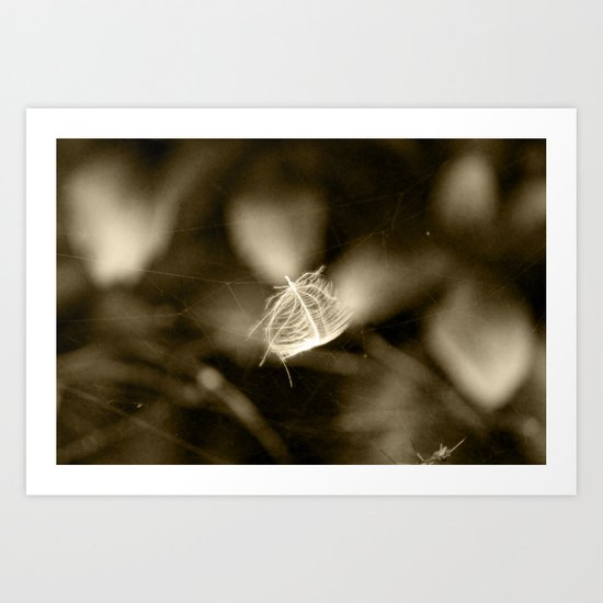 Feather trapped in spider web Art Print