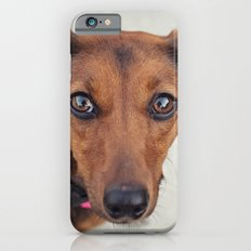 Doxie Dares You  Slim Case iPhone 6s