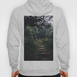 left without being seen Hoody