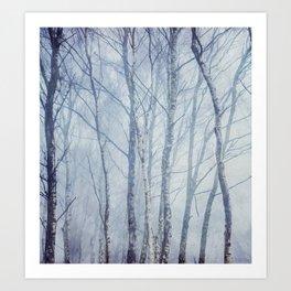 Mist In The Trees Art Print