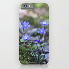Anemone in forest Slim Case iPhone 6s