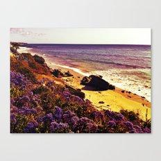 Violet Seas Canvas Print