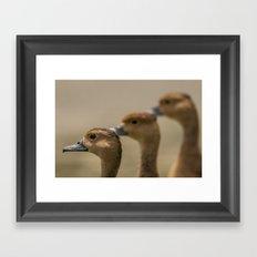 Do Re Me Framed Art Print