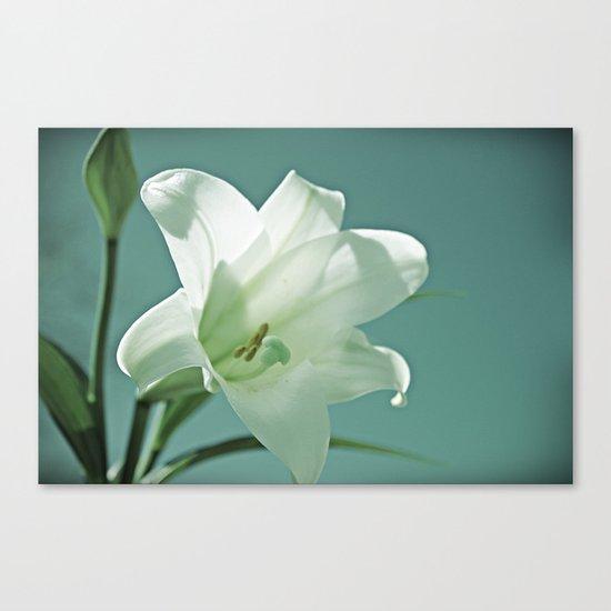 Seasonal Bloomer Canvas Print
