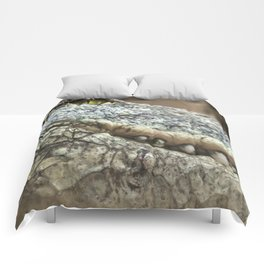 Wildlife Collection: Crocodile Comforters