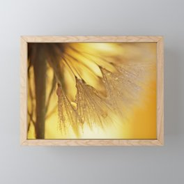 Dandelion Light Framed Mini Art Print