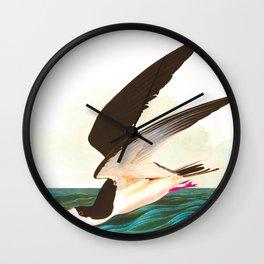Black Skimmer or Shearwater Bird Wall Clock