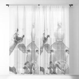 Black and White Farm Animal Friends Sheer Curtain