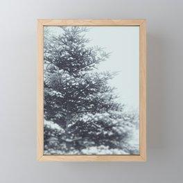 Spruce Framed Mini Art Print