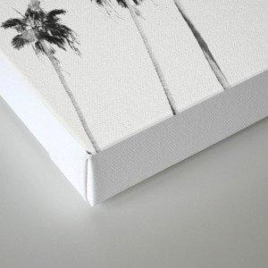 Black & White Palms Canvas Print