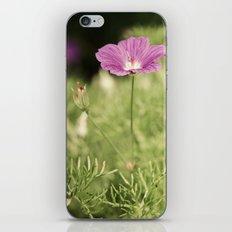 My Gentle Verse iPhone & iPod Skin