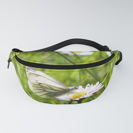 WHITE BUTTERFLY on COMMON DAISY Fanny Pack