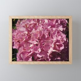 Hydrangea Framed Mini Art Print