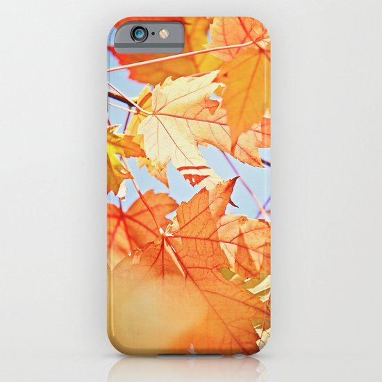 Fall Color iPhone & iPod Case
