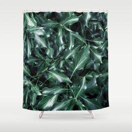 Ivy 01 Shower Curtain