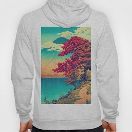 The New Year in Hisseii Hoody