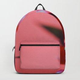Red Hope Backpack