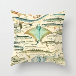 Vintage Fish Diagram // Poissons II by Adolphe Millot XL 19th Century Science Textbook Artwork Throw Pillow