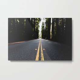 Into The Woods I Go - Nature Photography Metal Print