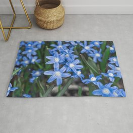 Easter Snow Glories Rug