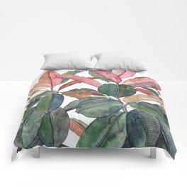 Rubber Plant Comforters