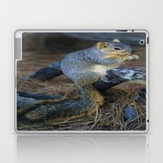 Mr. Squirrel! Laptop & iPad Skin
