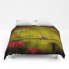 Natures Twitter War Comforters