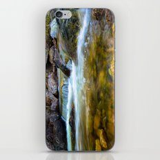 Forest Pool iPhone & iPod Skin