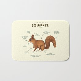 Anatomy of a Squirrel Bath Mat
