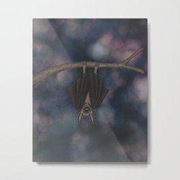 little brown bat asleep on a branch Metal Print