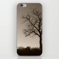 Melancholy in December iPhone & iPod Skin