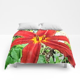 Red Day Lily Comforters