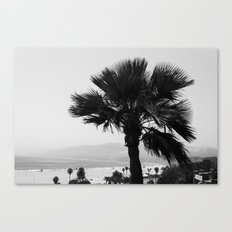 LA Palm tree Canvas Print
