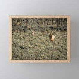 The Bull Elk Framed Mini Art Print