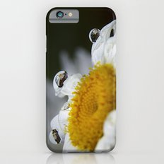 Daisy reflections iPhone 6s Slim Case