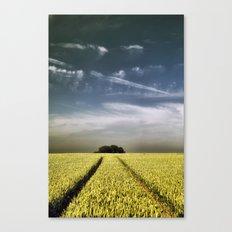 Tree Tracks Canvas Print