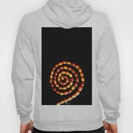 Seeds spiral Hoody