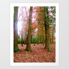 Fall-ing for the Season Art Print