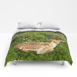 Fawn and Wildflowers Comforters