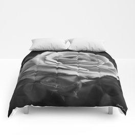 Pink Roses in Anzures 2 B&W Comforters