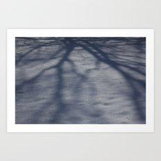 Snowy Shadow Art Print