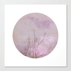 Planet 30101 Canvas Print